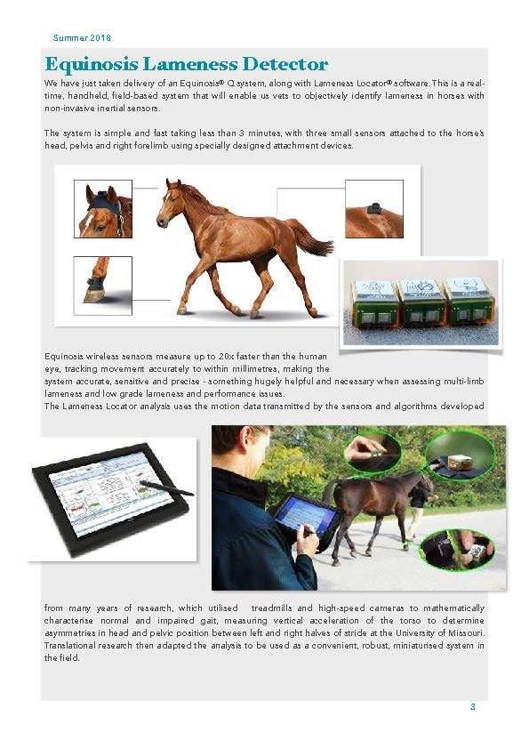 The Barn Equine Surgery   The Barn Summer Newsletter