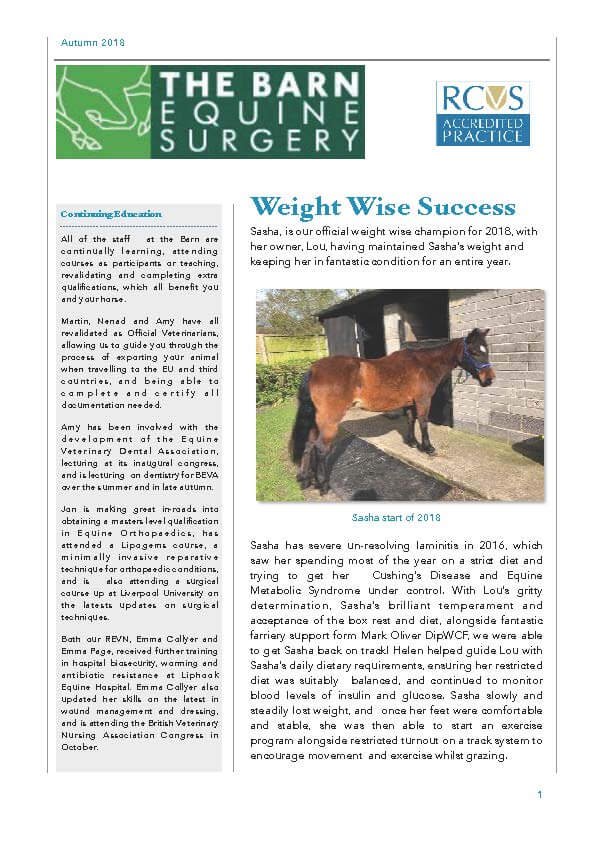 The Barn Equine Surgery   Autumn 2018 Newsletter