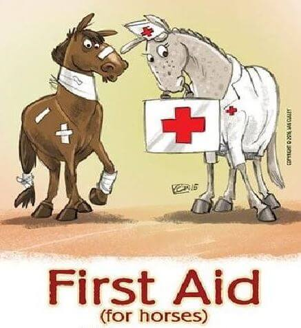 the barn equine surgery client events25 feb equine first aid course \u2013 march 23rd