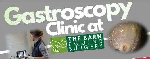 Gastroscopy Month banner