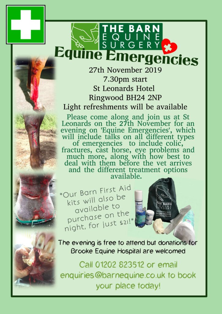 The Barn Equine Surgery | Client evening - Equine Emergencies