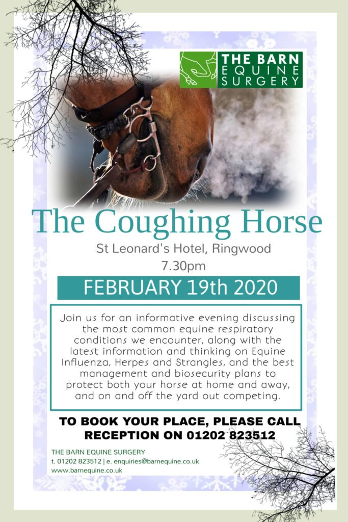 The Coughing Horse poster